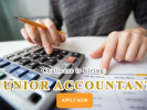 Junior Accountant (Work in HCM)